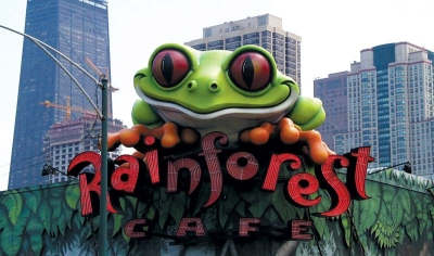 30ft Cha Cha Tree Frog for Rainforest Cafe