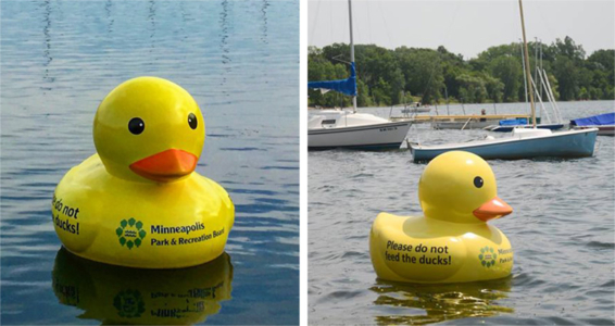 4 ft. Rubber Ducky Sculpture for Minneapolis Parks & Recreation Board