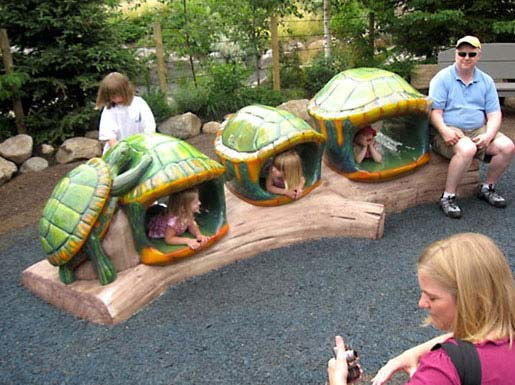 11ft Turtle Crawl Through for Minnesota Zoo