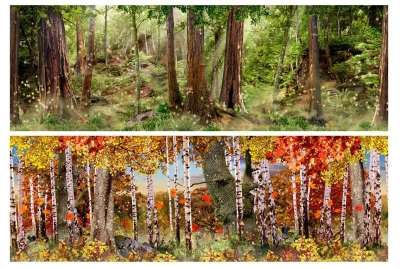 MagiQuest Forest Wallcovering Layouts for Great Wolf Resort
